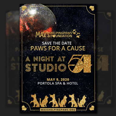 Flyer Design by A night at studio 54